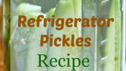 Refrigerator Pickle Recipe