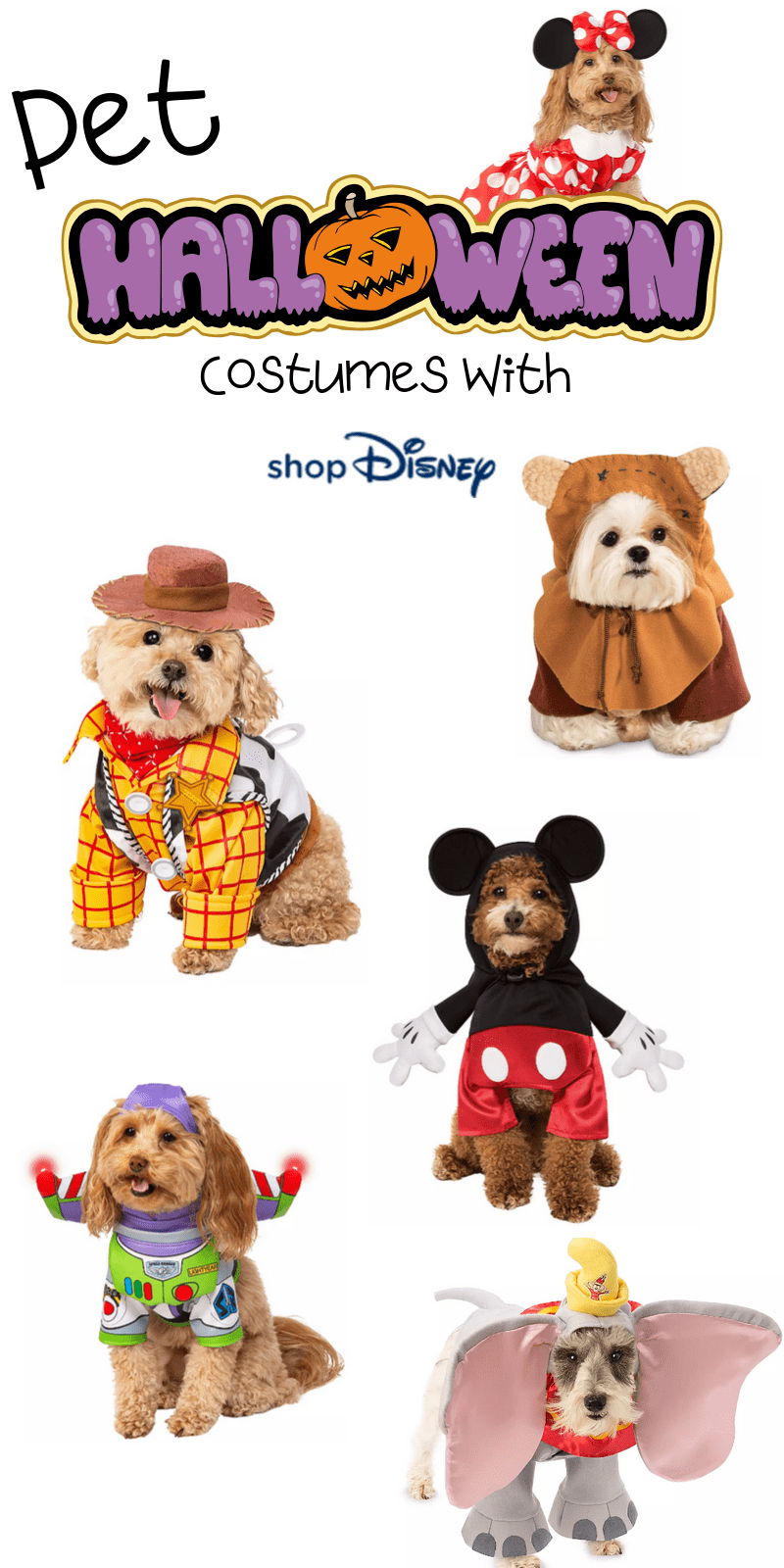 Here are the best in Disney Halloween Costumes for Pets. This fantastic post rounds up the spooky and adorableness of ShopDisney's Halloween Collection for 2019.  #ad @ShopDisney #halloween2019 #disney #disneylove #disneymagic #waltdisney #disneyprincess #mickeymouse #disneyphoto #disneylife #disneyfan #mickey #disneyaddict #disnerd #starwars #halloween